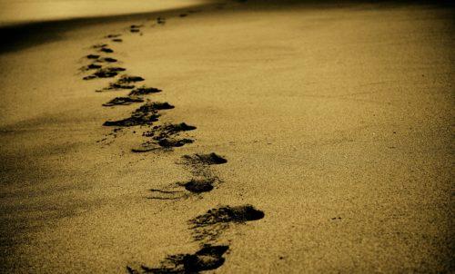 Employee Journey messbar machen mittels einer Feedbacklandschaft